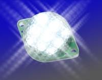 EPL - Taillight (Heckleuchte)